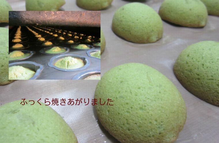 湘南グリーンレモンケーキ