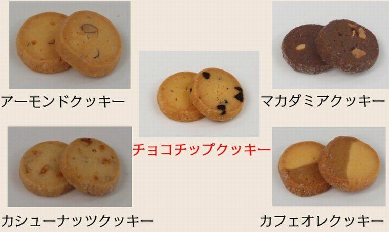 クッキーBOX チョコチップ