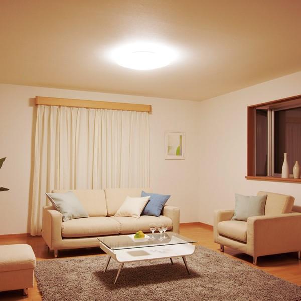 LEDシーリングライト (〜14畳)調光/調色 CL14DL-CF1 アイリスオーヤマ