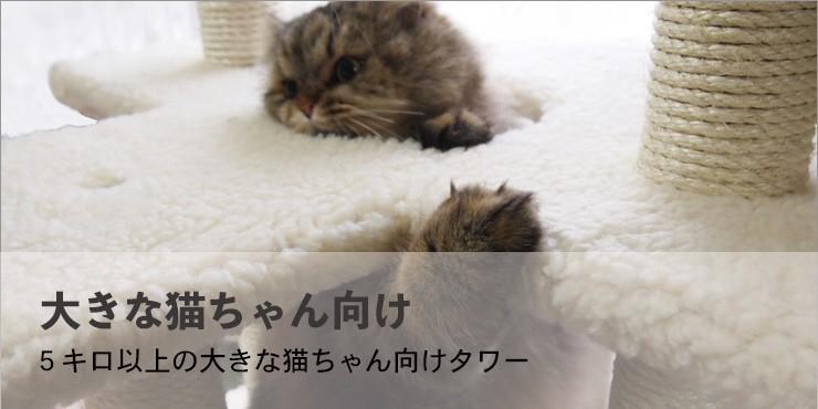 """""""大きな猫向けタワー"""""""