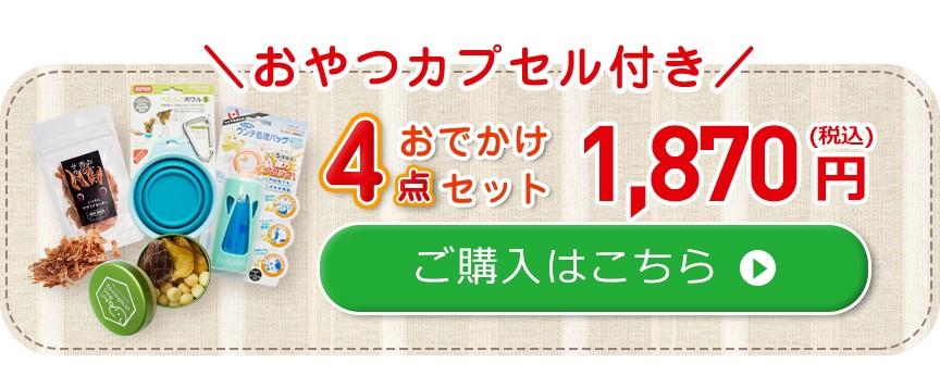 おでかけ4点セット 1836円 ご購入はこちら