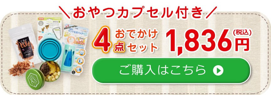 おやつカプセル付き4点おでかけセット1836円