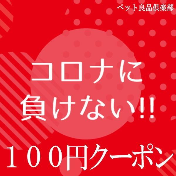 コロナに負けない!3,300円以上のご購入で100円OFFクーポン