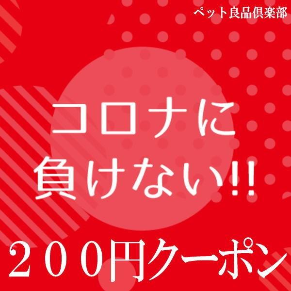 コロナに負けない!5,500円以上のご購入で200円OFFクーポン