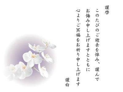 胡蝶蘭カード