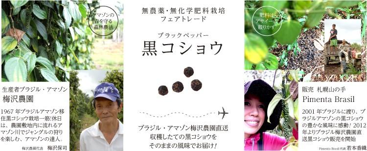 無農薬・無化学肥料栽培ブラジルアマゾントメアスー産梅沢農園直送ブラックペッパー黒コショウ販売