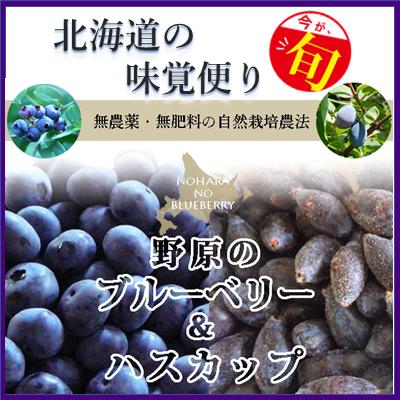 北海道の味覚便り 野原の果実:ハスカップ&ブルーベリー