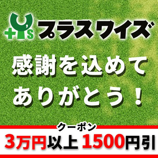 3万円以上でさらにお得!