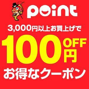 期間限定100円クーポン