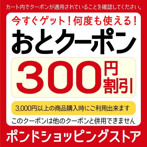 3,000円以上お買いもので300円OFF!