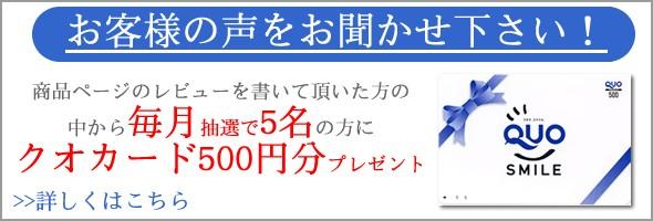 レビューを書いて毎月抽選でクオカード500円分プレゼント