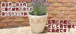 テラコッタ 素焼き鉢,植木鉢 おしゃれ 陶器,ガーデニング