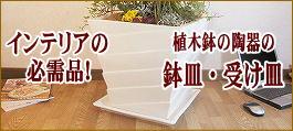 受け皿 鉢皿,植木鉢 おしゃれ 陶器,インテリア植木鉢
