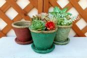 植木鉢 おしゃれ 陶器,ガーデニング,ていちゃんの植木鉢屋さんYahoo!店 新商品 NEW