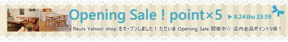 Opening Sale
