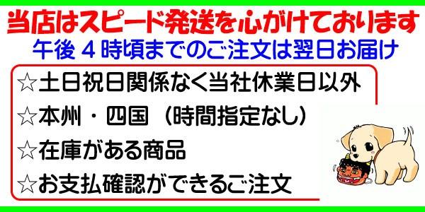 スピード発送、本州と四国は翌日お届け、北海道、九州も翌々日お届けします、当日発送にはいろいろな条件がありますので全てのご注文が対応している訳ではありません