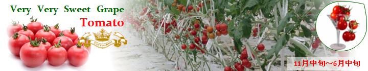 ベリーベリースイートグレープトマト