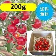 グレープトマト200g