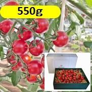 グレープトマト550g