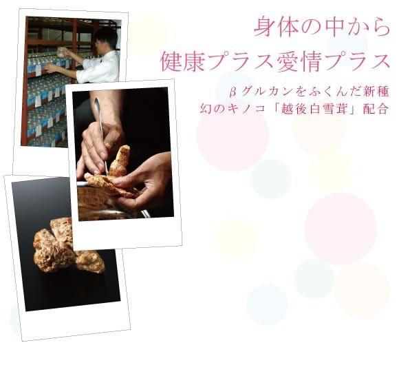 βグルカンを含んだ新種キノコ「越後白雪茸」配合