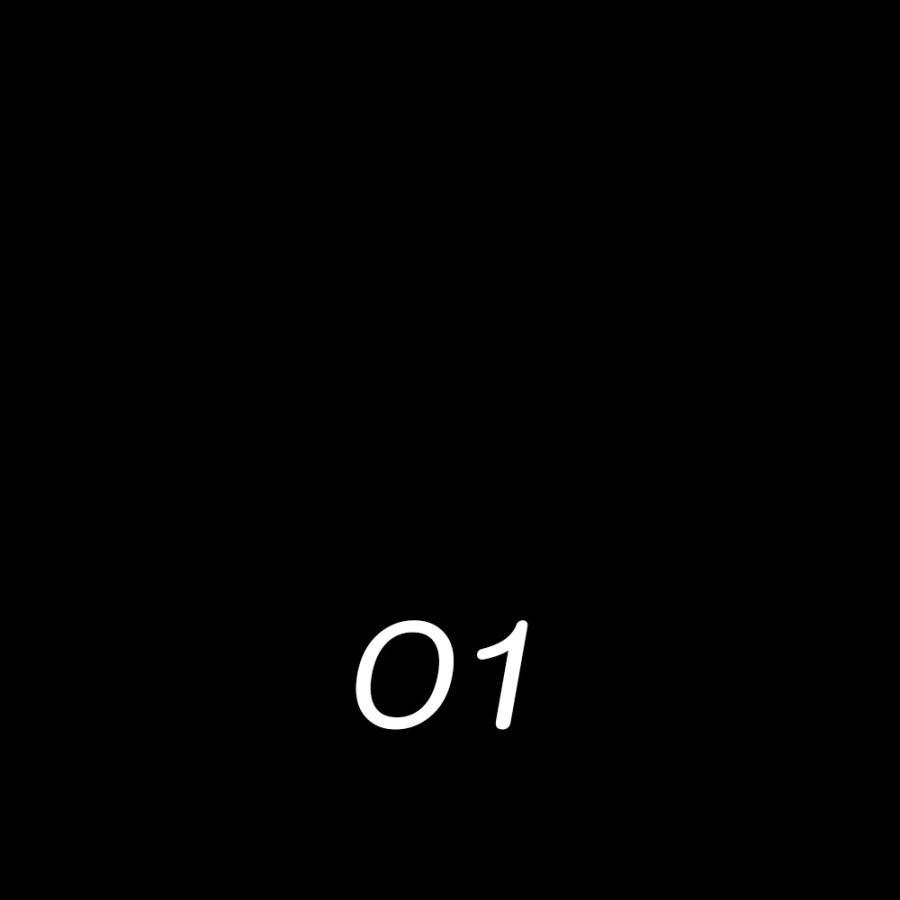 靴用 ワックス サフィールノワール ミラーグロス ハイシャイン 鏡面磨き 靴 靴用 ワックス ポリッシュ 革靴 手入れ 鏡面 75ml 全7色 Saphir Noir primeavenue 07