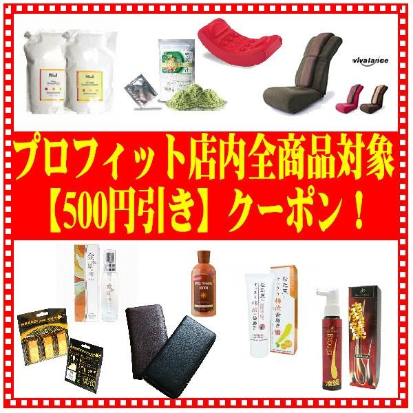【500円OFF】プロフィット店内全商品対象値引きクーポン♪