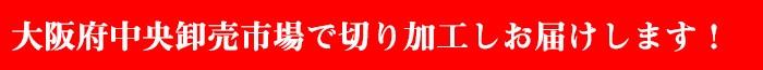 大阪府中央卸売市場から直送します。
