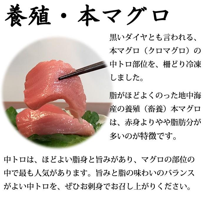 本マグロ 中トロ(養殖・冷凍)