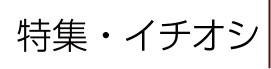 特集/イチオシ