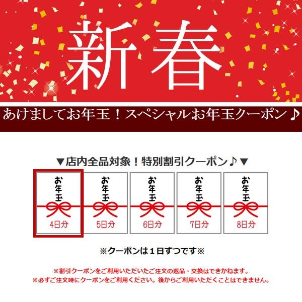 protocolからのお年玉100円OFFクーポン♪毎日発行!(1月4日分)
