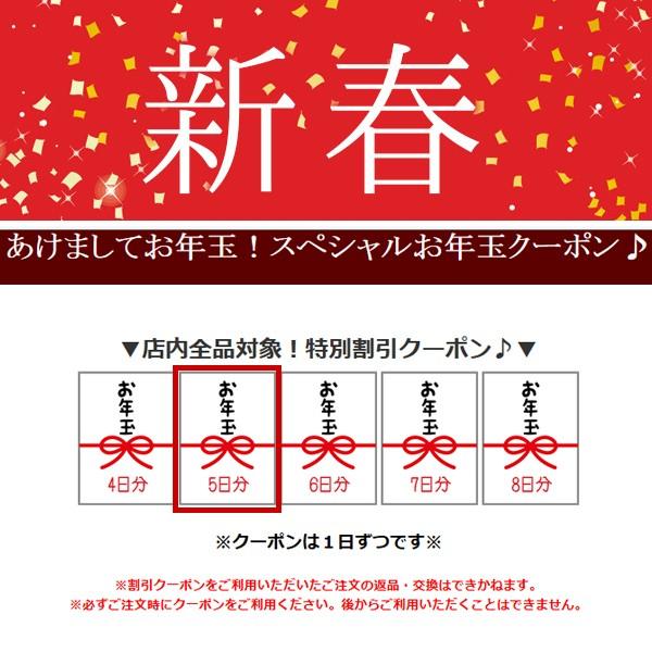 protocolからのお年玉100円OFFクーポン♪毎日発行!(1月5日分)