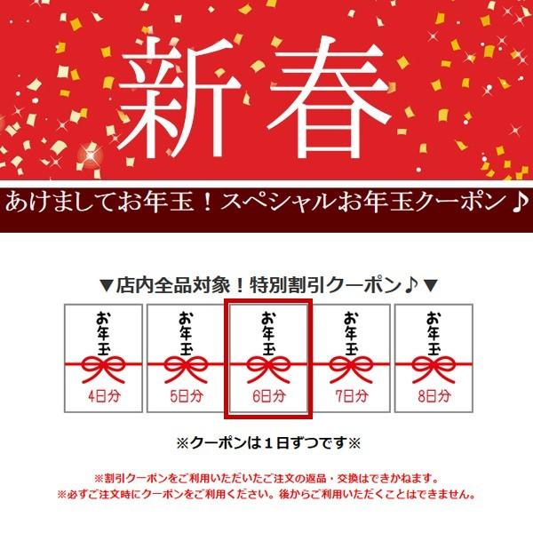 protocolからのお年玉100円OFFクーポン♪毎日発行!(1月6日分)