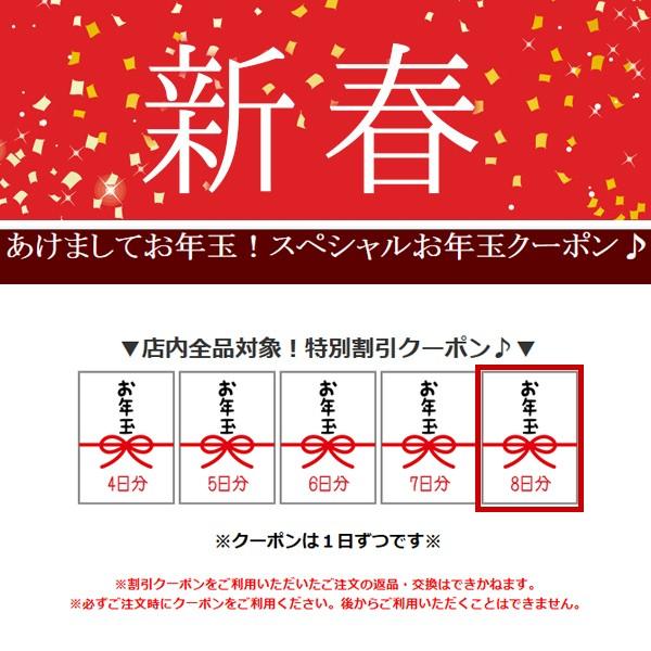 protocolからのお年玉100円OFFクーポン♪毎日発行!(1月8日分)