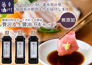 【送料無料】贅沢な生醤油 辛川醤油