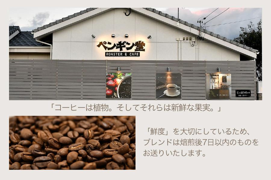 スペシャルティコーヒー3種お試しセット