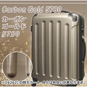 セール中5780 6262 抗菌消毒済み 送料無料 一年保証 スーツケース セミ大型 LMサイズ 6~12日 超軽量 TSAロック キャリーバッグ|rabbittuhan|18
