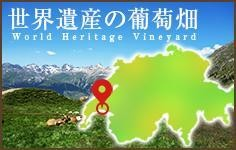 世界遺産の葡萄畑