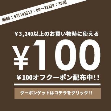 【秋のお得クーポン】100円OFFクーポン♪