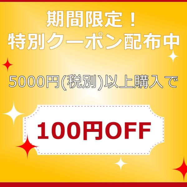 3日間限定!5000円以上のお買い物で使える100円OFFクーポン