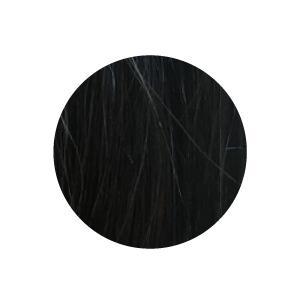 2個セット 利尻昆布 ヘアカラー シャンプー トリートメント 250mL 白髪染め ノンシリコン|rafflet|06