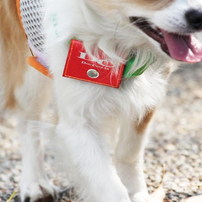 ラロック 犬用鑑札入れ迷子札 反射ロゴ付きカラーポーチ 使用写真1