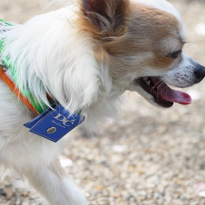 ラロック 犬用鑑札入れ迷子札 反射ロゴ付きカラーポーチ 使用写真2