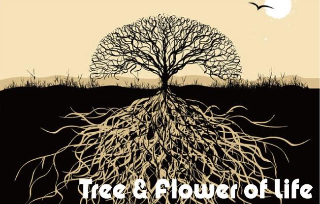 生命の木 tree of life 生命の樹