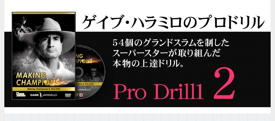 ゲイブ・ハラミロの「MAKING CHAMPIONS Pro Drills」合計54個のグランドスラムのタイトルを獲得した11人のスーパースターの26種類のプライベート練習法