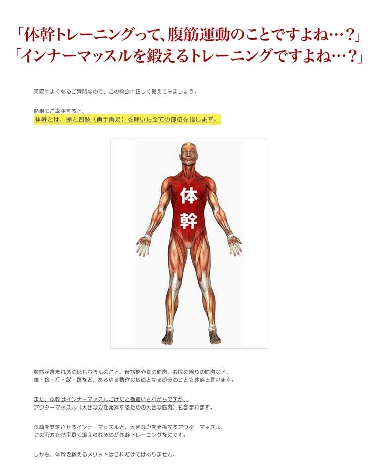 簡単にご説明すると、体幹とは、頭と四肢(両手両足)を除いた全ての部位を指します。