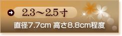 2.3〜2.5寸