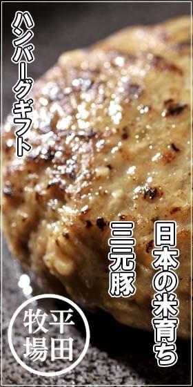 平田牧場 日本の米育ち三元豚ハンバーグ
