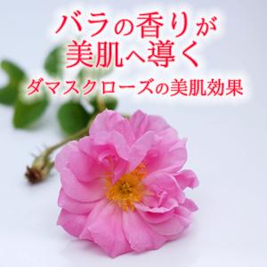 バラの香りが美肌へ導く