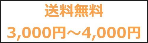 送料無料3,000円〜4,000円
