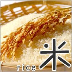 米(rice) 産地直送の美味しいお米を食卓に